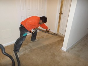 Flood Cleanup Technician Remediating Water Damage