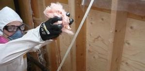Mold Damage Restoration Technician